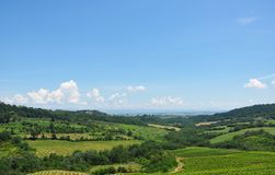 Large Italian fields with vegetation. Bright sunny day and a blue sky over large Italian fields with vegetation, hills, and trees stock image