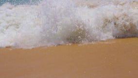A blue wave runs across the ocean. stock video