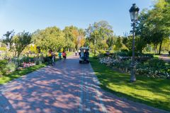 A bright sunny day with walking people in the park along a wide avenue. Walking among the picturesque green lawn with royalty free stock images