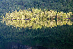 Bright sunny forest reflection in higland lake Royalty Free Stock Photography