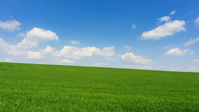 Bright sunny spring day large clouds over green field stock video footage