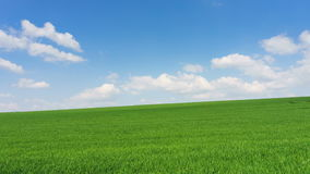 Bright sunny spring day large clouds over green field stock footage
