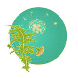 Bright sunny vector illustration of a field of dandelion growing on the background of turquoise sky in the round frame. Blowball f Stock Image