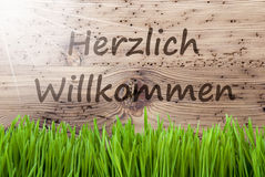 Bright Sunny Wooden Background, Gras, Herzlich Willkommen Means Welcome Royalty Free Stock Images