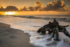 Bright Sunrise. A bright glorious sunrise at Botany Bay beach on Edisto Island, South Carolina Royalty Free Stock Photography