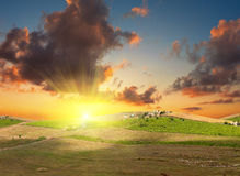 Bright sunset Royalty Free Stock Image