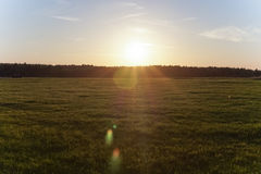 Bright sunset on the green field royalty free stock photography