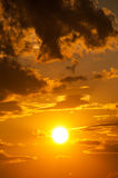 Bright sunset photo as background Stock Photography