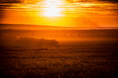 Bright sunset photo as background Royalty Free Stock Photography