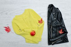 Bright sweater, a black jacket, a red apple and leaves. Fashionable concept.  Royalty Free Stock Photography