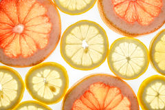 Bright sweet grapefruit and lemon slices on white. Bright sweet grapefruit and lemon slices. Juicy transparent fruit on white Royalty Free Stock Images