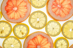 Bright sweet grapefruit and lemon slices on white. Bright sweet grapefruit and lemon slices. Juicy transparent fruit on white Stock Photos