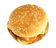 Bright tasty burger Stock Photography