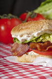 Bright, tasty and healthy BLT Royalty Free Stock Photography