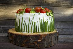 Appetizer with cheese and vegetables. Bright tasty snack cake with mascarpone and cherry for a summer party on a wooden background Royalty Free Stock Photo