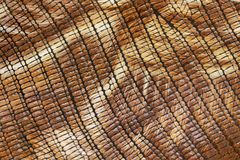 Bright texture of genuine leather close-up, embossed under skin reptile, beige brown shades, exotic reptile. Concept of shopping, manufacturing Royalty Free Stock Photos