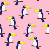 Bright Toucan Vector Seamless Pattern Royalty Free Stock Photos