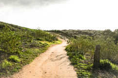 Bright trail. A sunny yet cloudy path on a hill Royalty Free Stock Photography