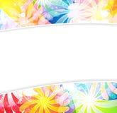 Bright transparent summer flowers Stock Image