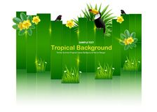 Bright tropical background with jungle plants. Exotic pattern wi Royalty Free Stock Images