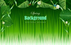 Bright tropical background with jungle plants. Exotic pattern wi. Th tropical leaves. Vector illustration Stock Image