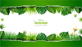 Bright tropical background with jungle plants. Exotic pattern wi Stock Photography