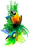 Bright tropical birds on a white background.