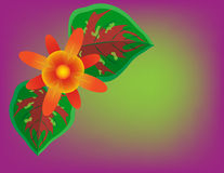 Bright tropical flower and leaves Stock Image