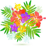 Bright tropical flowers vector summer bouquet Royalty Free Stock Photography