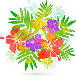 Bright tropical flowers vector summer bouquet Stock Photography
