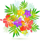 Bright tropical flowers vector summer bouquet Royalty Free Stock Image