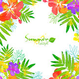 Bright tropical flowers vector summer frame Stock Photos
