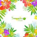 Bright tropical flowers vector summer frame Stock Photos