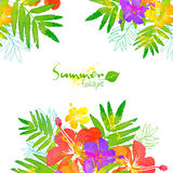 Bright tropical flowers vector summer frame Royalty Free Stock Photo