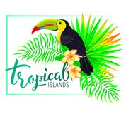 Tropical island composition with toucan leaves flowers Stock Photography
