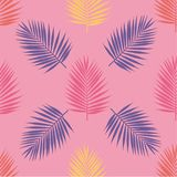 Bright tropical palm leaves seamless pattern. Vector illustration Royalty Free Stock Photos