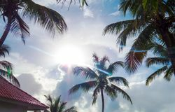 Bright tropical view during a beautiful day. A bright tropical view during a beautiful day in Puerto Plata, Dominican Republic royalty free stock photos