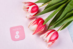 Bright tulips and card. Royalty Free Stock Photography