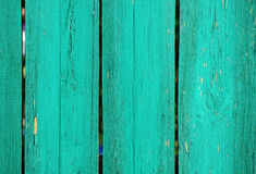 Bright turquoise wooden wall from boards close up. Royalty Free Stock Image