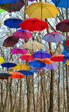 Bright umbrellas. Bright, Vivid Colors. Freedom concept. Multicolored umbrellas  in park against blue sky Royalty Free Stock Image