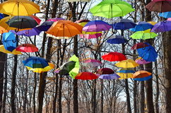 Bright umbrellas. Bright, Vivid Colors. Freedom concept. Multicolored umbrellas  in park Rainbow Colors Stock Images