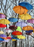 Bright umbrellas on trees, blue sky. Park landscape in autumn. Many Multicolored umbrellas up in the sky. Rainbow Colors Royalty Free Stock Image