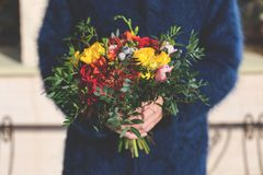 Bright unusual elegant fall bouquet in hands of the florist girl stock images