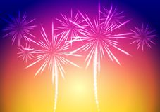 Bright vector fireworks background Stock Images