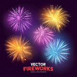 Bright Vector Fireworks Stock Photography