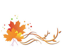 Bright vector floral autumn illustration. Bright  floral autumn - vector illustration Royalty Free Stock Photo