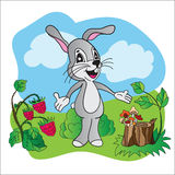 Bright vector illustration hare on meadow Royalty Free Stock Image