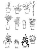 Bright vector set of house plants in pots with an inscription. I Royalty Free Stock Photos