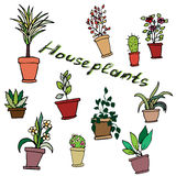 Bright vector set of house plants in pots with an inscription. Royalty Free Stock Images