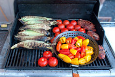 Bright Vegetables on A Barbeque Grill. A host of yummy bright vegetables and meat on a barbeque Stock Photos
